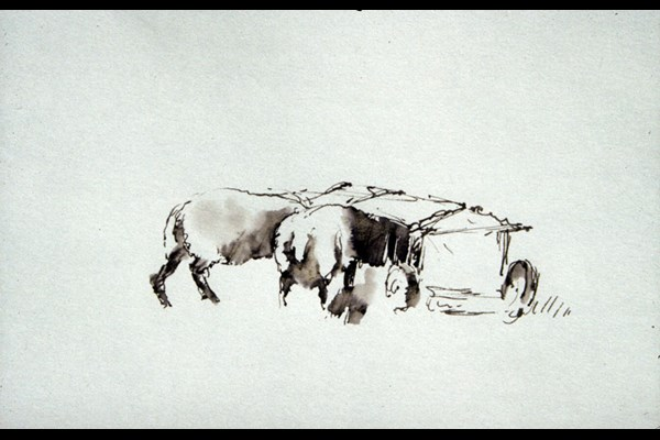 Pen and Wash For Beginners with Catherine Headley