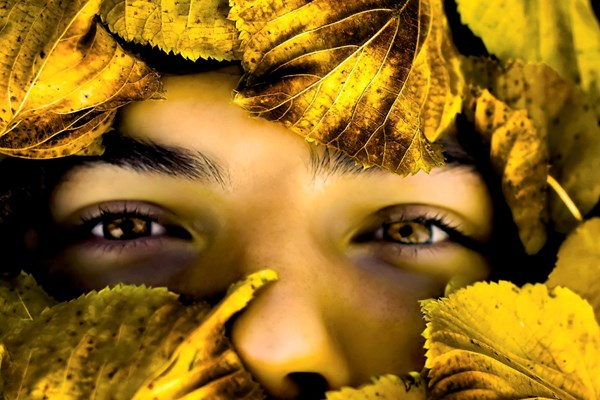 Wild Boy - Family Music Workshop
